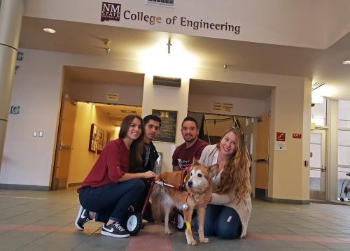 Kita dog with wheelchair and students who designed it