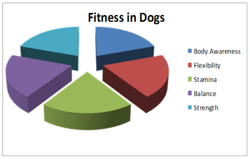The individual components of dog fitness