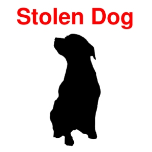 pet-theft-awareness-day