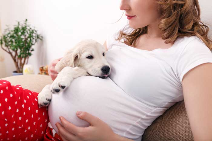 pregnant woman with dog