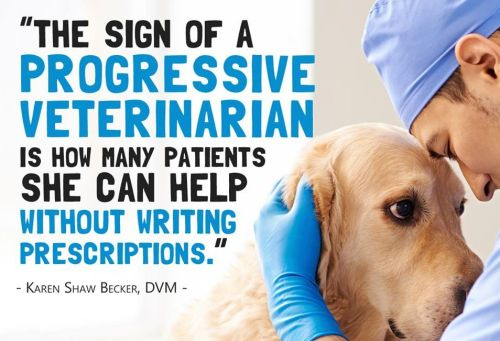 Dr Karen Becker on progressive veterinarians