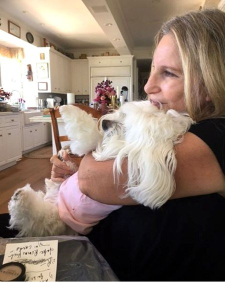 Barbra Streisand and Sammie from Instagram