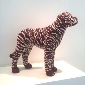 Crayon brindle dog