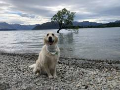 Neisha at Lake Hawea