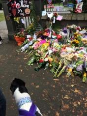 Izzy with flowers