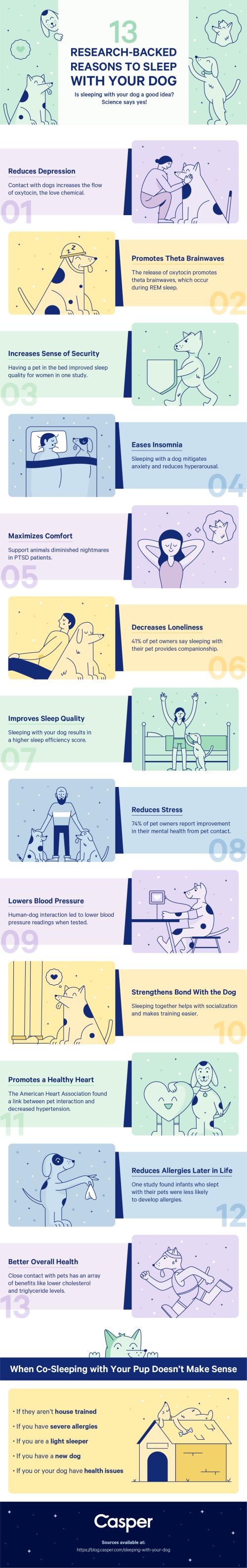 Reasons to sleep with your dog