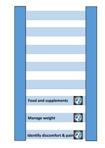 Arthritis management diagram 3rd rung
