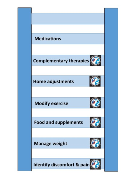 Arthritis management diagram - the ladder