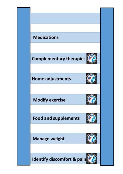 Arthritis management diagram - the ladder