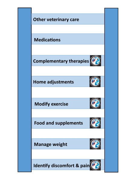 Arthritis management diagram