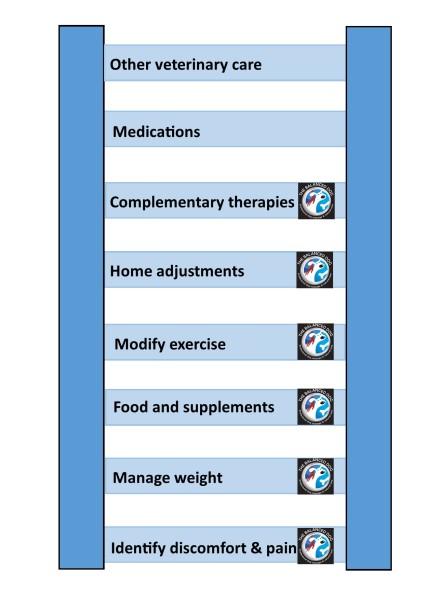 Arthritis management diagram